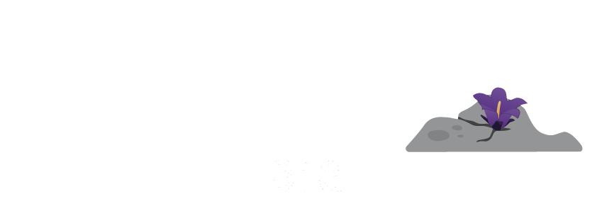 nomat-tours-montenegro-logo-white