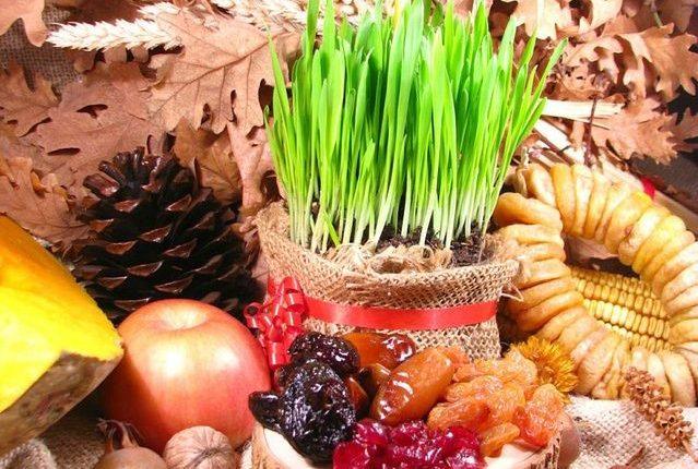 blog-montenegrin-christmas-decoration