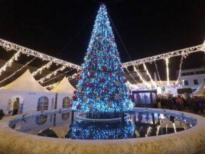 blog-christmas-tree-montenegro-podgorica