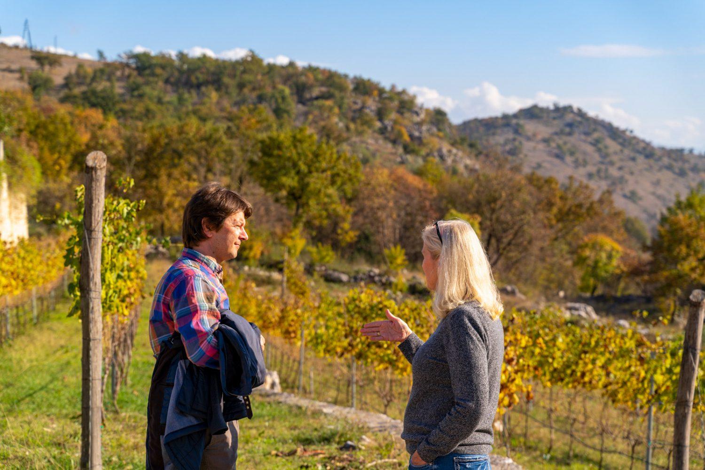 vineyard-tour-visit-montenegro