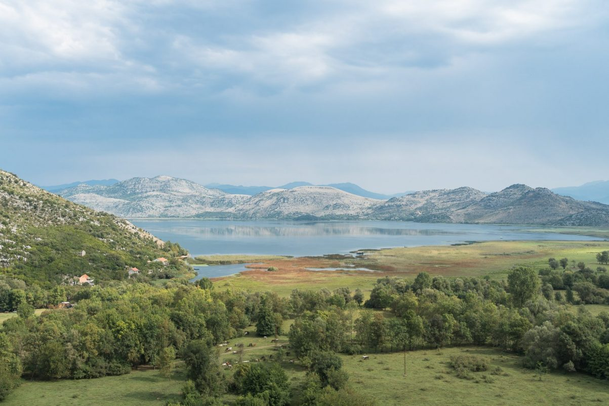 skadar-lake-national-park-montenegro