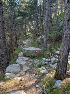 caravan-road-kotor-montenegro
